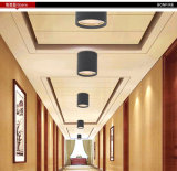 내부 & Exterior Ceiling Light, SAA를 가진 Outdoor Ceiling Lamp & 세륨 Approved