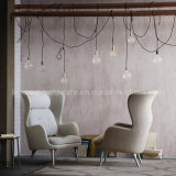 [جيم] [هون] [رو] [لوونج شير] إسكندينافيّة تصميم [لوونج شير] [ليفينغرووم] كرسي تثبيت