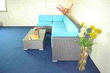 Insieme modulare del sofà del rattan