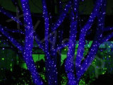 Mini laser do jardim da luz/Natal da corda do Natal Lights/LED ao ar livre