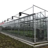 Аграрный парник Multispan стеклянный для овоща