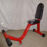 ボディービルの適性の体操装置の縦のベンチXr34