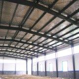 Almacén de acero ligero de la alta calidad de la construcción con gran diseño