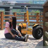 Moteur de la couleur BLDC de la boudineuse DIY de vent pour le véhicule électrique