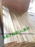Contre-plaqué décoratif de peuplier de LVL/Lvb pour Furnitute avec la qualité et le prix bas
