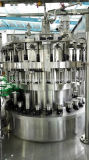 Usine en verre automatique de remplissage de bouteilles