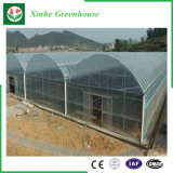 농업 상업적인 플레스틱 필름 온실