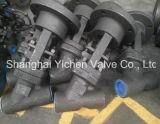 Vanne Globe en Chine forgé en acier Y-Pattern (YJ6 (1) 1Y)