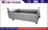 Máquina de la limpieza de cepillo del alimento de la lavadora del cepillo de la fruta y verdura