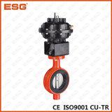 Válvula de borboleta pneumática de Esg de 300 séries