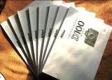 Broschüre / Tri-Folding Promotion Seite / Faltblatt