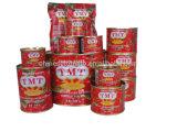 TMT conservada del tomate Pasta de todo el tamaño 70 G, 210 G, 400 G, 800 G, 850 G, 1 Kg, 2, 2 Kg