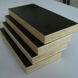 [لوو بريس] واجه فيلم بناء خشب رقائقيّ من الصين مصنع