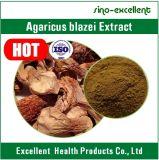 Poudre normale d'extrait de Blazei d'agaricus