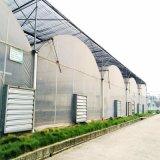 설치를 위한 상업적인 수경법 시스템 온실