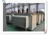 10kv volledig-verzegelt de In olie ondergedompelde Transformator van de Macht van de Legering van het Type Amorfe
