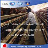 중국에 있는 층을%s 자동적인 닭 감금소 디자인