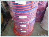 Riga tubo flessibile del gemello di prezzi bassi della saldatura
