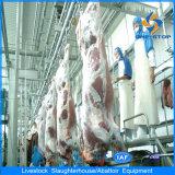 Vieh, das Zeile Kuh-aufbereitende Zeile Schlachten-Gerät schlachtet