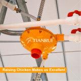 Buveur automatique de volaille pour la ferme de poulet