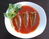 Sardinha enlatada 125g de Halal no petróleo vegetal