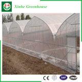 Systeem van de Hydrocultuur van de Huizen van het polyethyleen het Groene voor Groenten/Bloemen/Fruit
