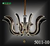 Lustre de maison chaude de vente/pendant en cristal décoratifs Lampbyzg5011-10 de lustre