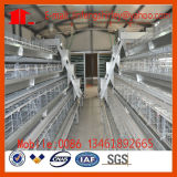 Billig ein Typ Huhn-Vogel-Rahmen-Rahmen-Geflügel-Gerät auf Verkauf