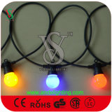 휴일 훈장을%s 연결할 수 있는 고무 케이블 LED 벨트 빛