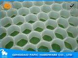 Scheda del favo/scheda di plastica di Praving del piatto del favo/favo