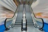 Porta interna & exterior da escada rolante econômica da qualidade padrão de Hight