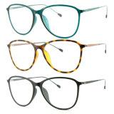 Optische Frame van het Oogglas Eyewear van Ultem van de manier het Plastic met Slank Roestvrij staal 7302