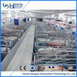Chambre de cochonnée de cochonnée de modèle de caisse de matériel de cage de porc à vendre