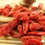 Secado de Goji Berry con alta calidad de China