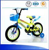 Hebei Children Bicycle 16 Inch Kid Bike für 3 5 Years Old Child
