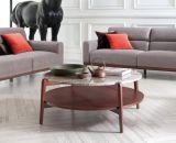 Tabella di tè moderna di vendita calda della mobilia