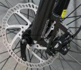管のリチウム電池250W中間駆動機構モーター山の電気自転車