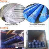 Sale caldo Welded Steel Pipe per Construction