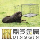 Cage de produit d'animal familier de doubles portes