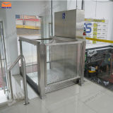 セリウムとの3m Hydraulic Vertical Wheelchair Lifts