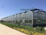 Niedrige Kosten-tropisches landwirtschaftliches Gewächshaus