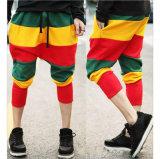 方法ヒップホップ様式は人々のためのハーレムのズボンを着色する