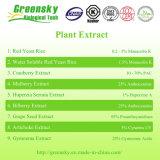 Polvo del extracto del arándano del grado de Greensky Pharma
