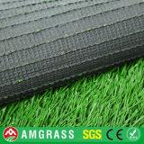 Erba decorativa artificiale e tappeto erboso sintetico da Allmay