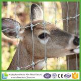 Cerca agricultural do engranzamento da junção articulada V para animais