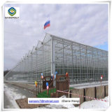 Парники листа PC Hydroponics Multispan аграрные