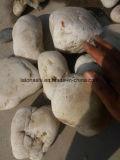 白いカラーの特大自然な美化の川の石造りの小石