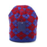 Le Double couche de Mens a contrôlé le chapeau de patinage de ski de Beanies tricoté parhiver chaud de chapeaux (HW404)