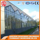 De Serre van het Blad van het Polycarbonaat van het Profiel van het Aluminium van het Frame van het Staal van de multi-spanwijdte voor Bloem