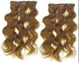 Cilps sulle estensioni dei capelli (FJSC-05)